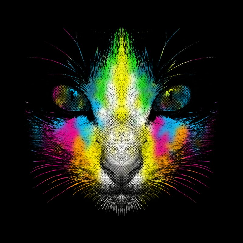Technicolor Cat Women's T-Shirt by moncheng's Artist Shop
