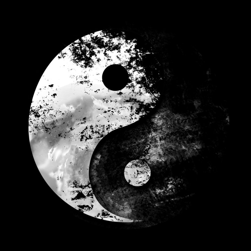 Yin Yang None  by moncheng's Artist Shop
