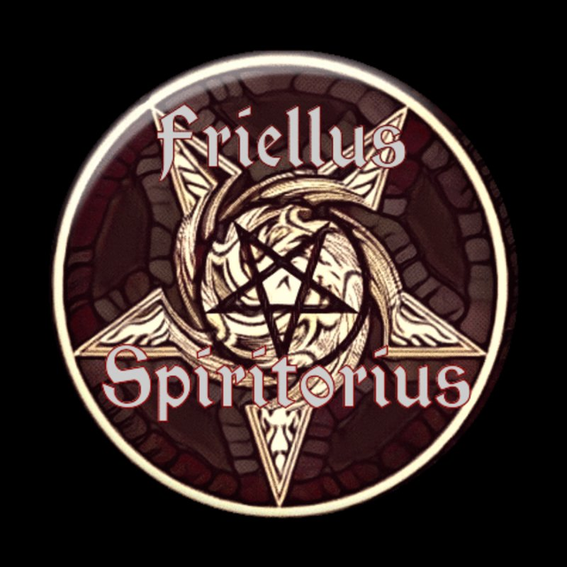 I am a free spirit Women's V-Neck by Moon Child Pagan