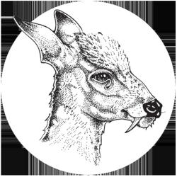 moongerm Logo