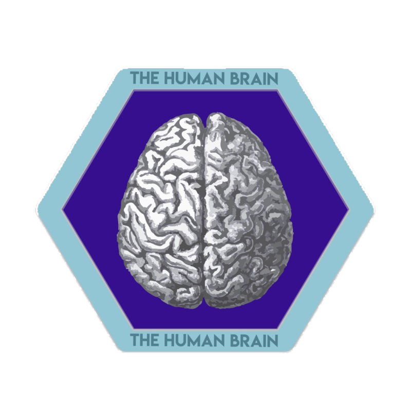 The Human Brain by Moon Joggers's Artist Shop