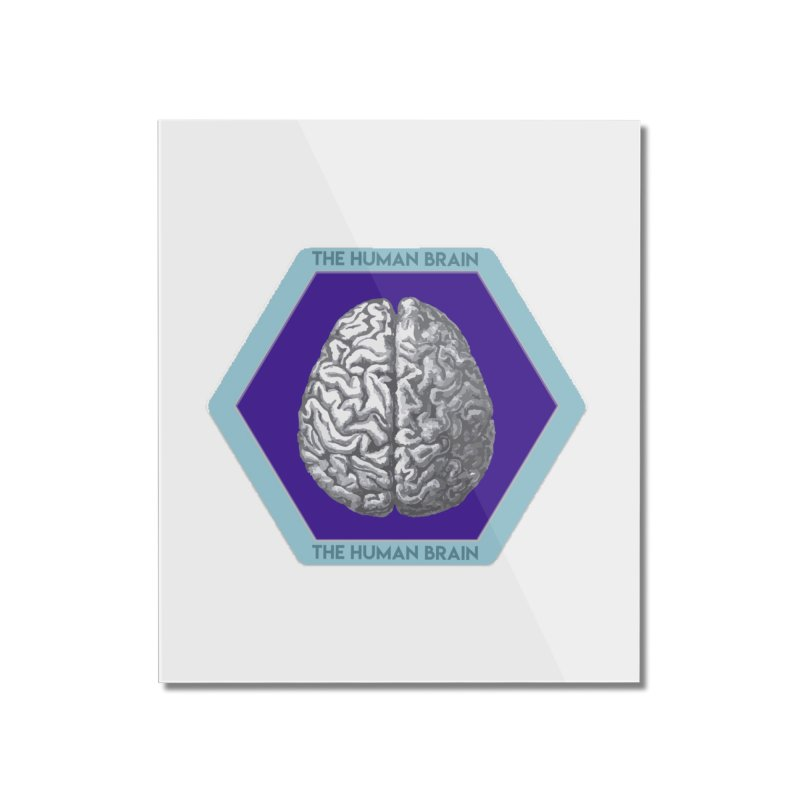 The Human Brain Home Mounted Acrylic Print by Moon Joggers's Artist Shop