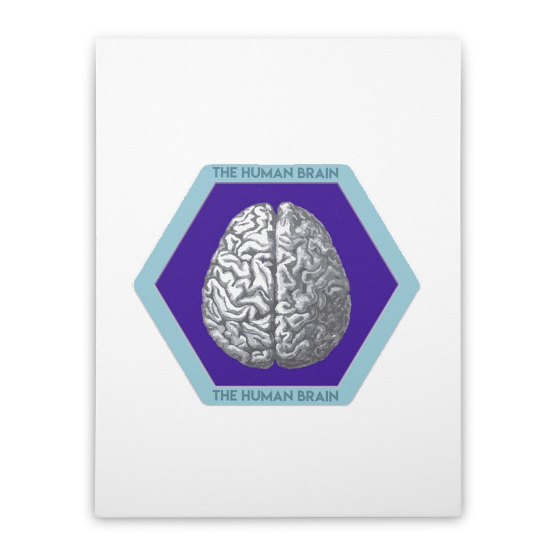 The Human Brain Home Stretched Canvas by Moon Joggers's Artist Shop