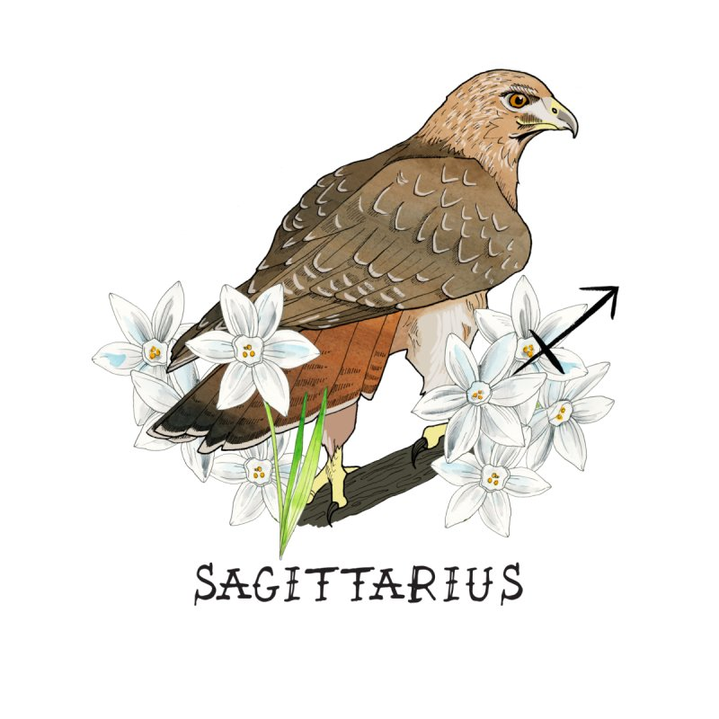 Sagittarius Men's T-Shirt by mwashburnart's Artist Shop