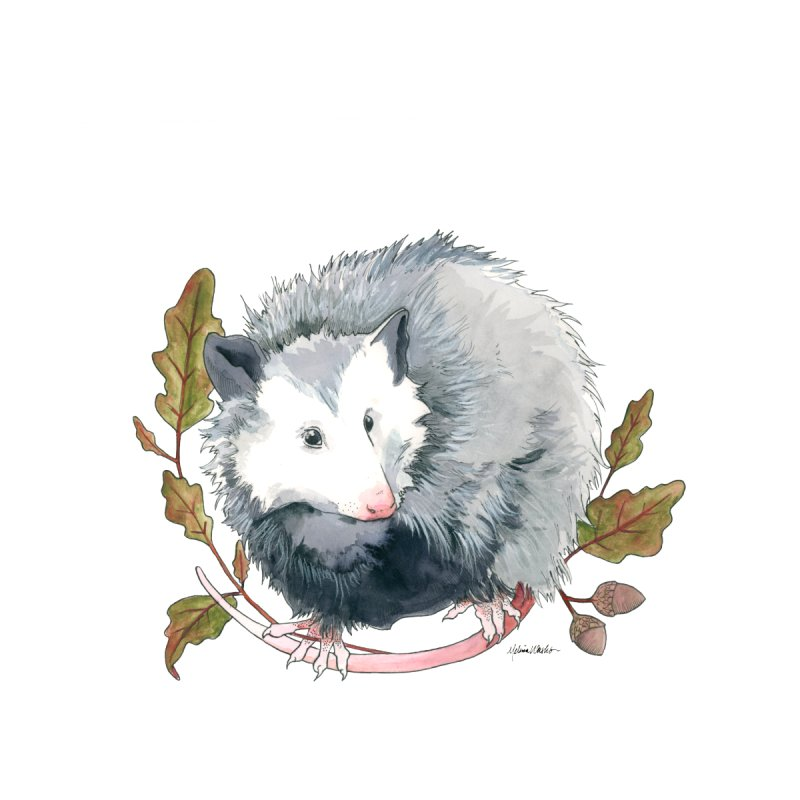 Possum and Oak Leaves by mwashburnart's Artist Shop
