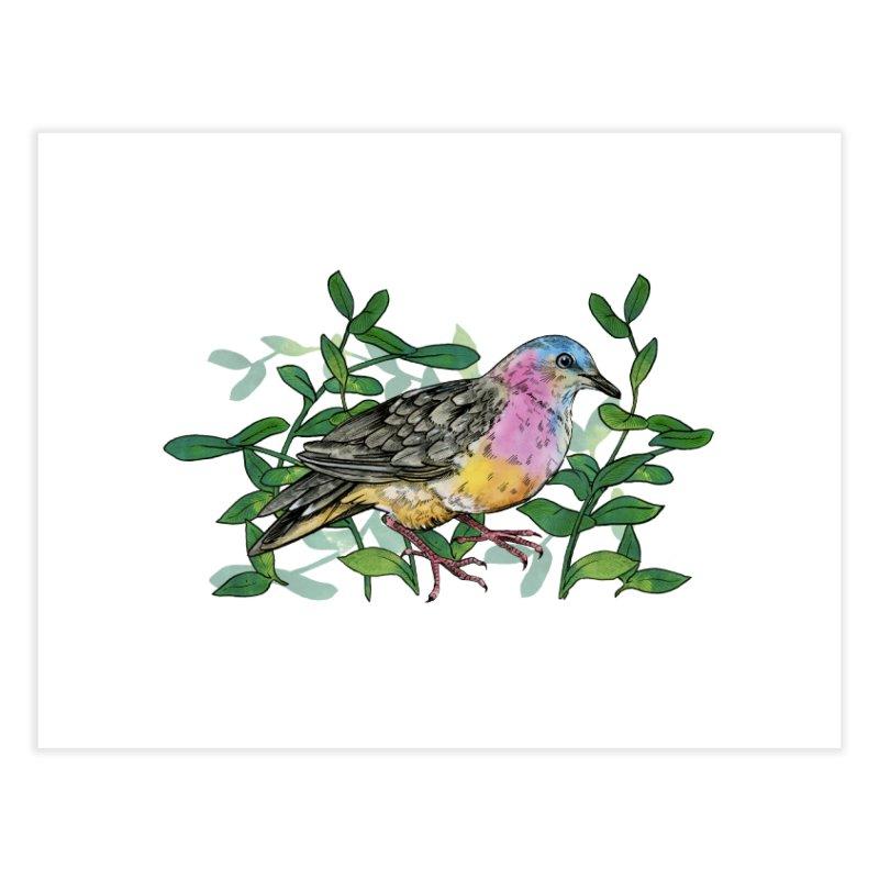 Tolima Dove Home Fine Art Print by mwashburnart's Artist Shop