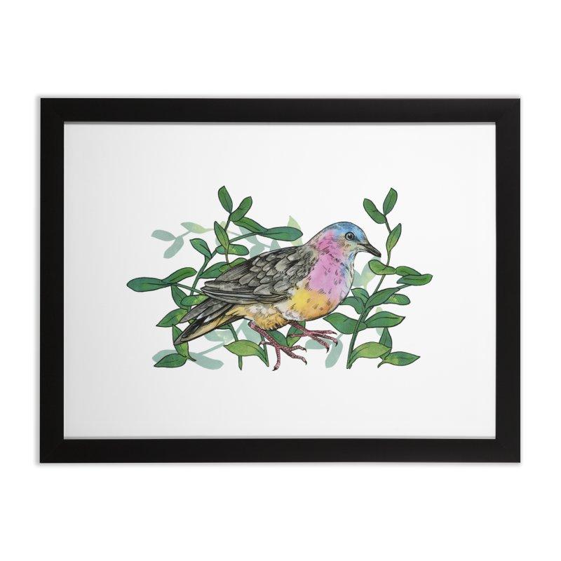 Tolima Dove Home Framed Fine Art Print by mwashburnart's Artist Shop