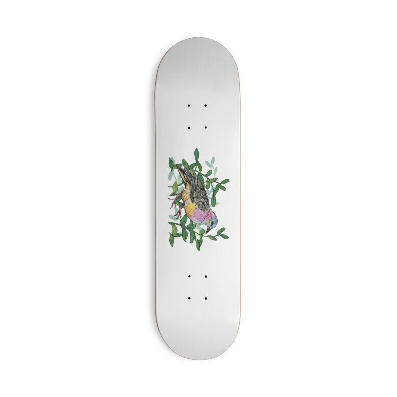 Tolima Dove Accessories Deck Only Skateboard by mwashburnart's Artist Shop