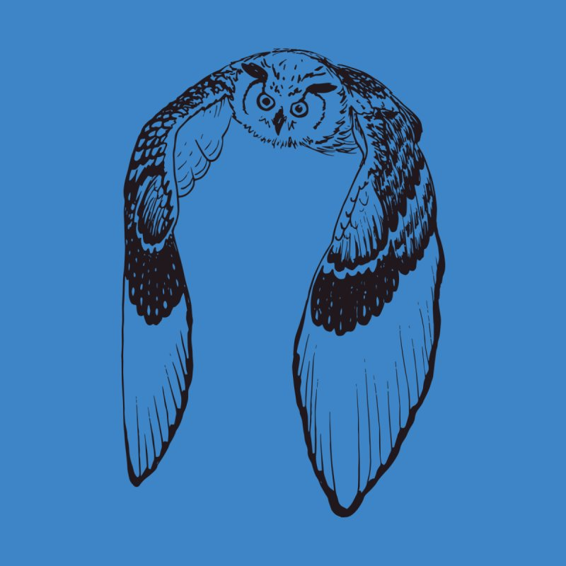 Flying Owl None  by nhanusek's Artist Shop