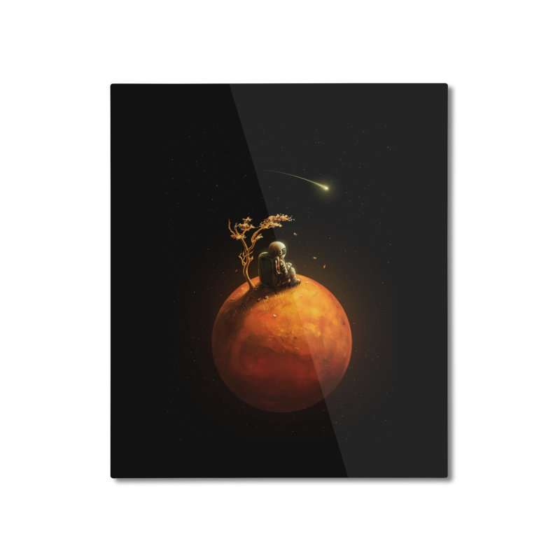 Stranded Home Mounted Aluminum Print by nicebleed