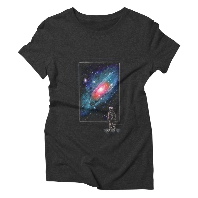 Looking Through A Masterpiece Women's Triblend T-shirt by nicebleed