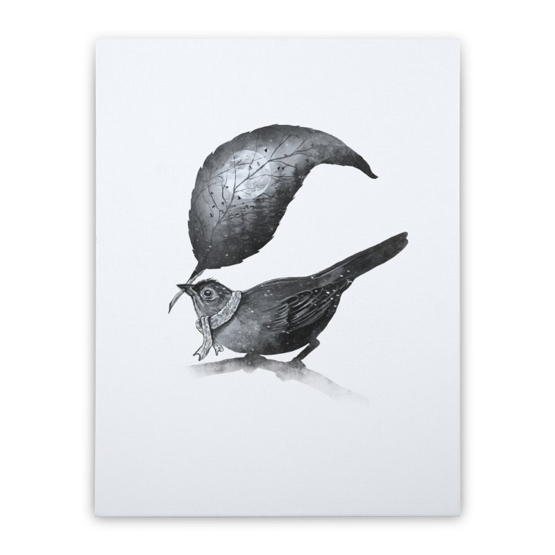 The Messenger II Home Stretched Canvas by nicebleed