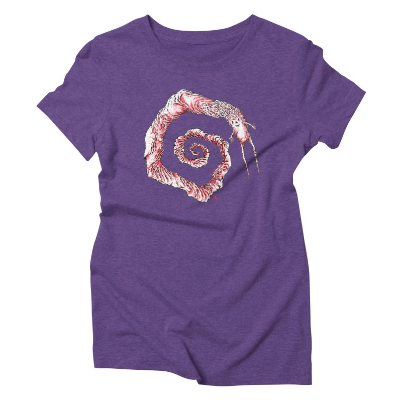 Spiral Joy Women's Triblend T-Shirt by Nick the Hat
