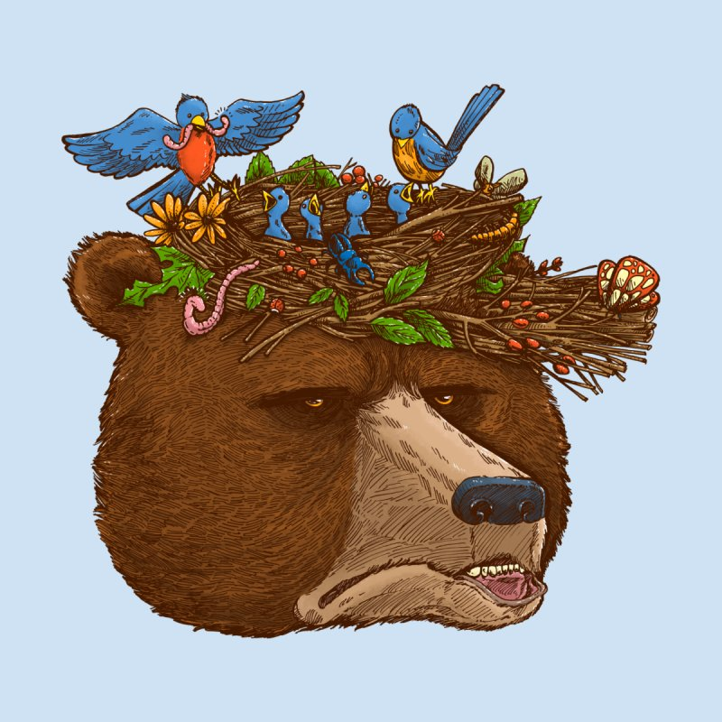 Mr Bear's Nature Hat 2017 None  by nickv47