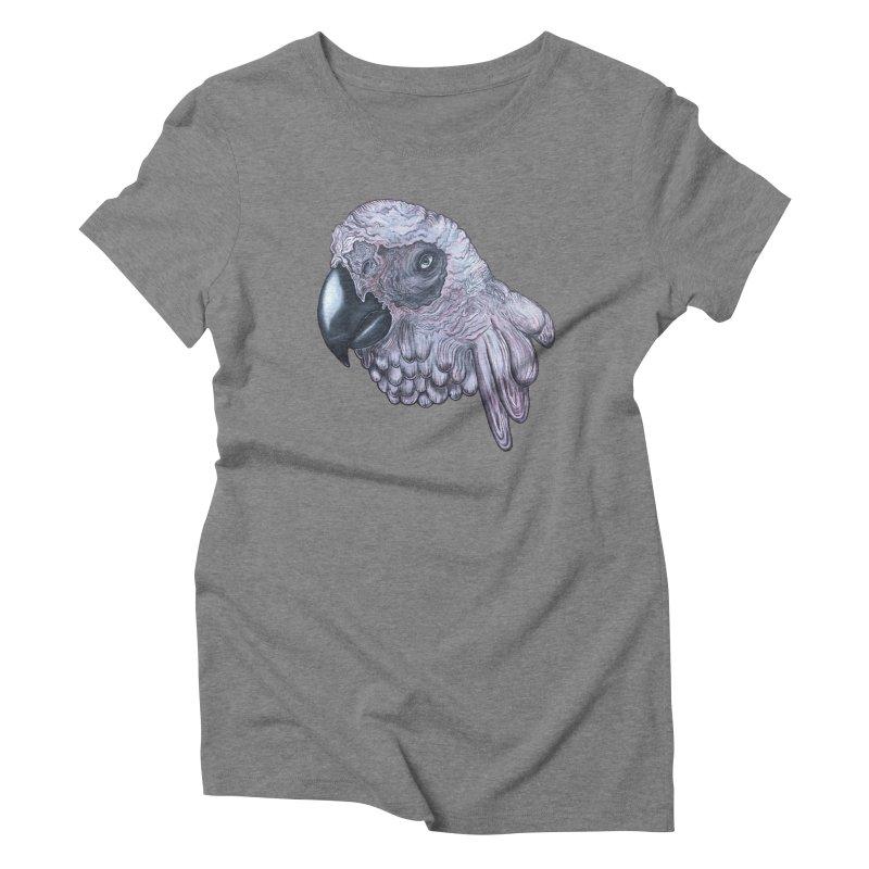 Gray Women's Triblend T-Shirt by Nicole Christman's Artist Shop