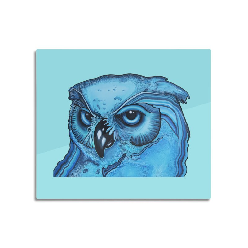 Blue Owl Home Mounted Acrylic Print by Nicole Christman's Artist Shop
