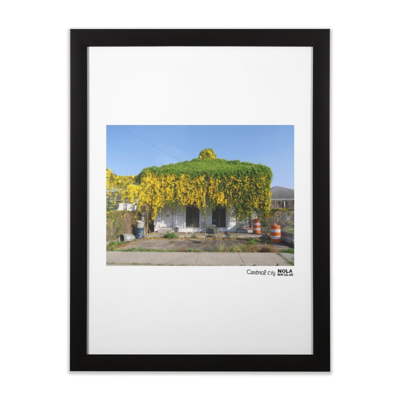 Cat's Claws in Central City Home Framed Fine Art Print by NOLA 'Nacular's Shop