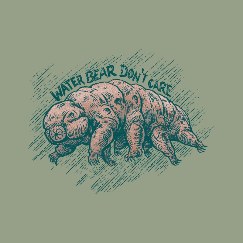 Water Bear Don't Care Women's Pullover Hoody by Octophant's Artist Shop