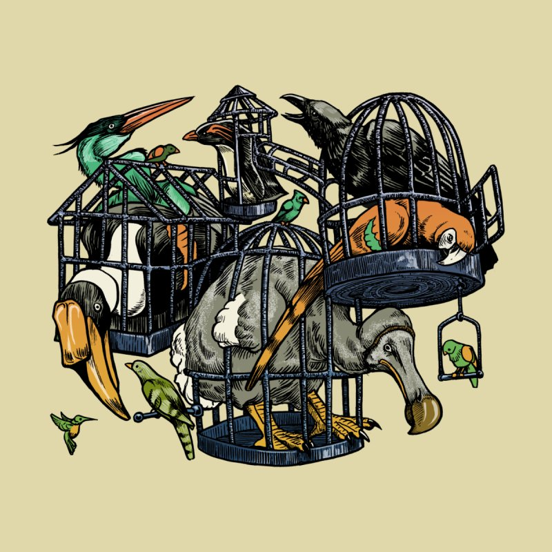 The Aviary Women's Fitted T-Shirt by Octophant's Artist Shop