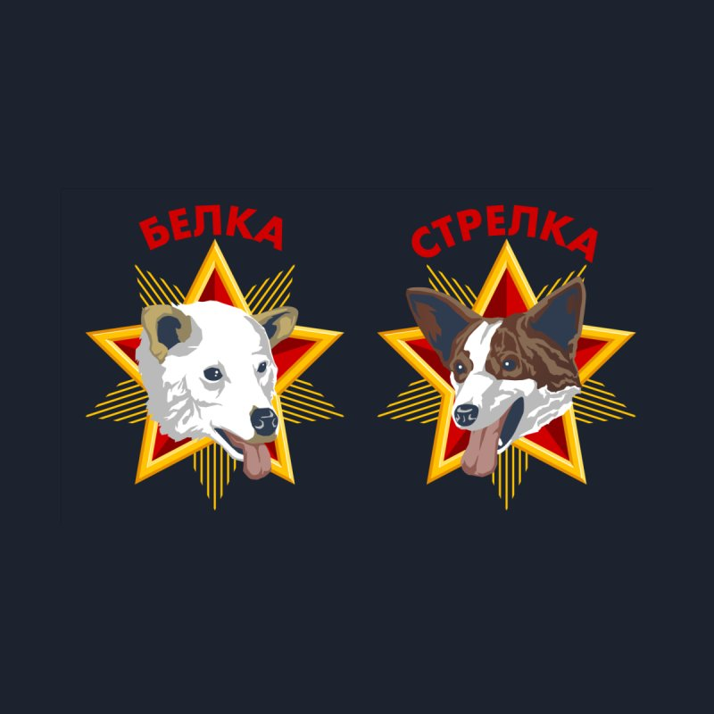 Belka & Strelka Shoes by Octophant's Artist Shop