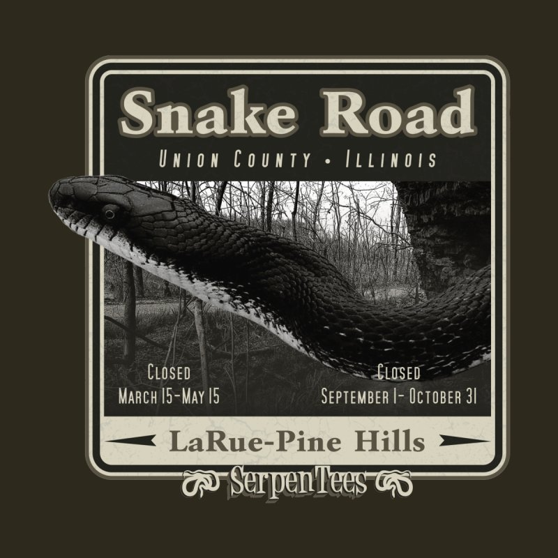 Snake Road by Drawn to Scales