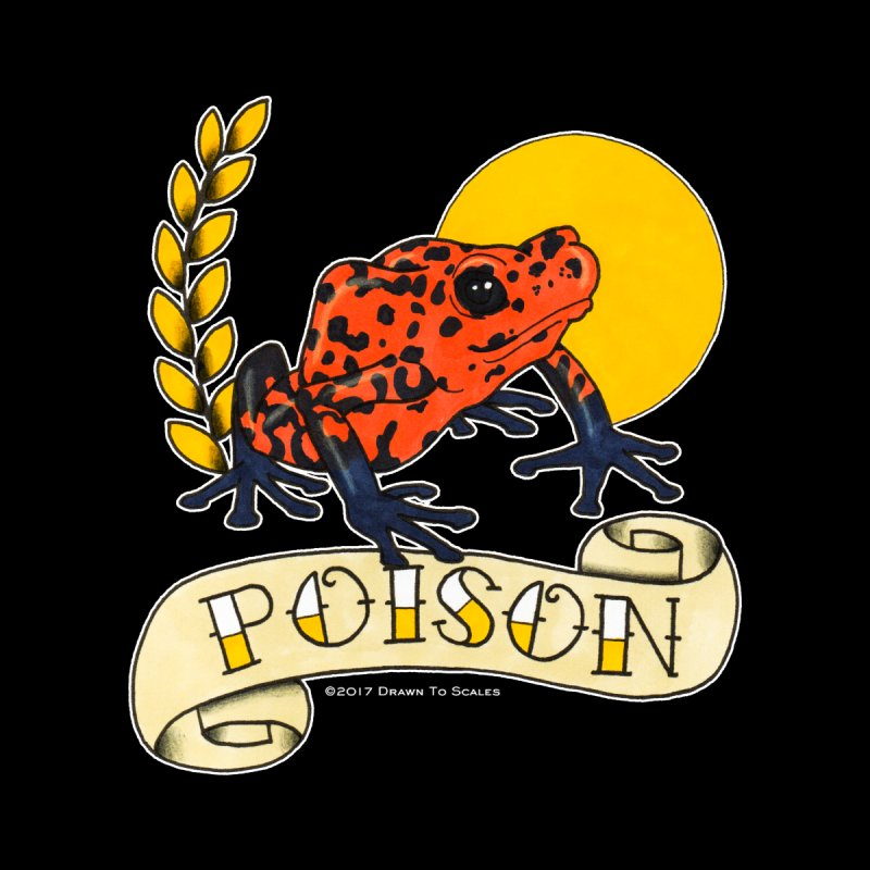 Poison Dart Frog (Oophaga pumilio) by Drawn to Scales