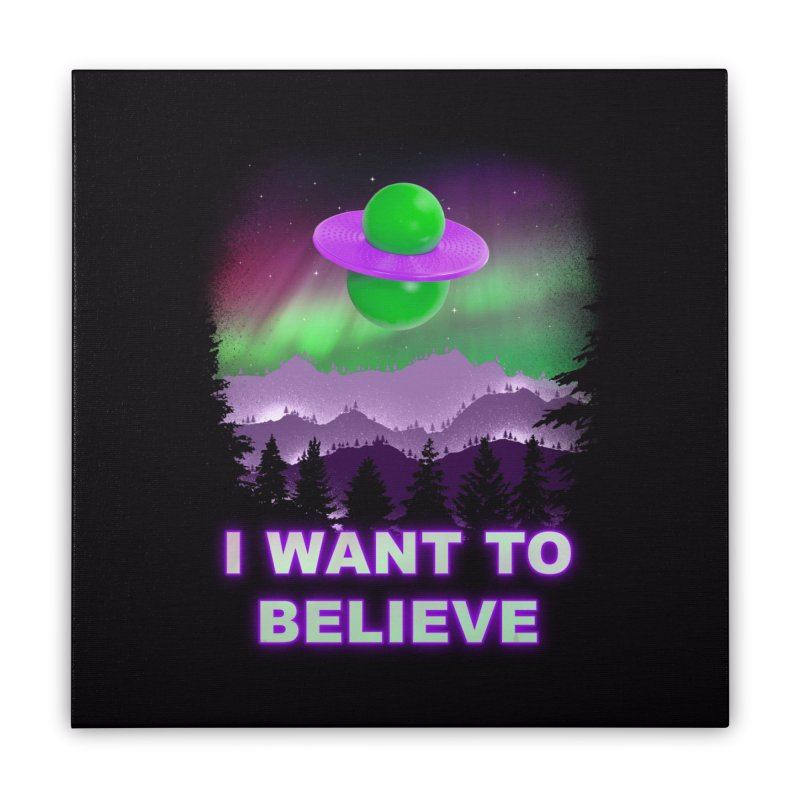 I Want to Believe Home Stretched Canvas by Opippi