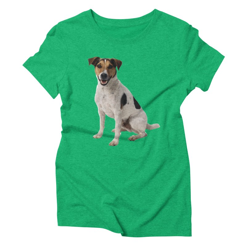 PUPPY 2 Women's Triblend T-Shirt by THE ORANGE ZEROMAX STREET COUTURE