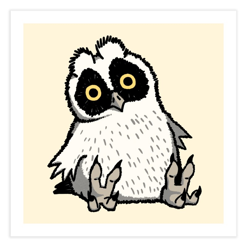 Curious Owlet Home Fine Art Print by Owl Basket