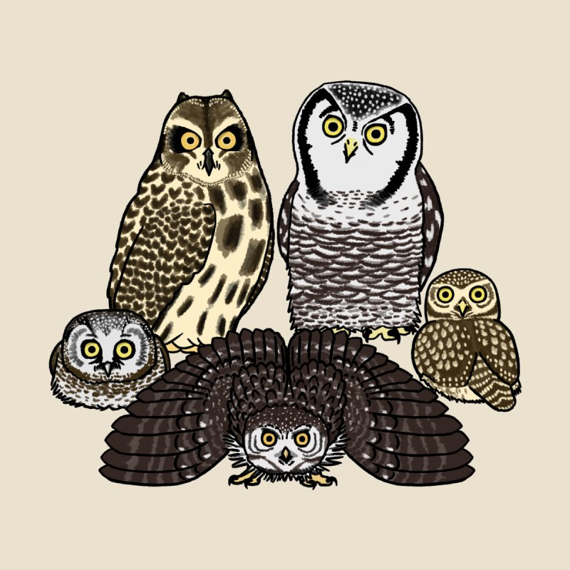 Little Parliament Home Fine Art Print by Owl Basket
