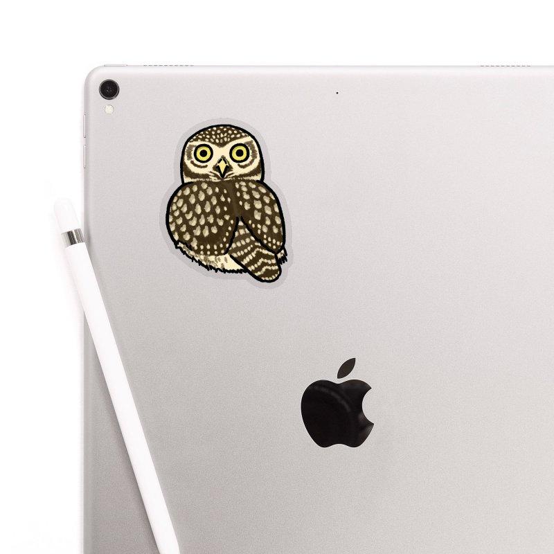 Little Owl Accessories Sticker by Owl Basket