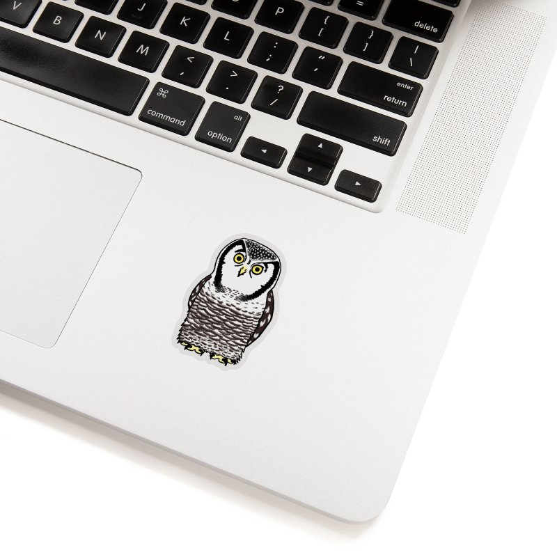 Hawk Owl Accessories Sticker by Owl Basket