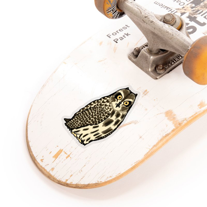 Short-eared Owl Accessories Sticker by Owl Basket