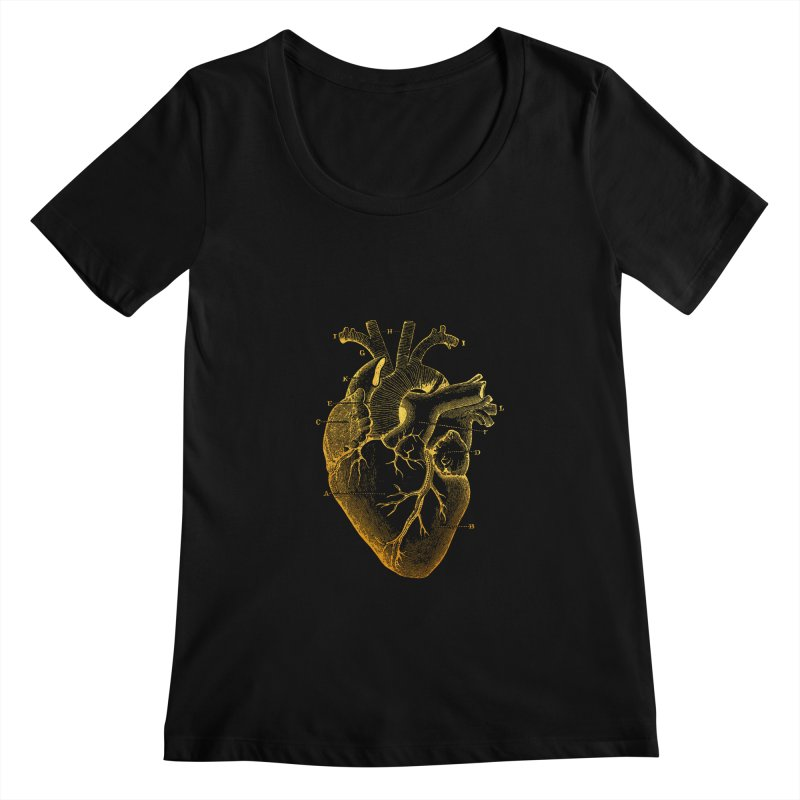 Heart Of Gold Women's Scoopneck by Paddy Ribeiro