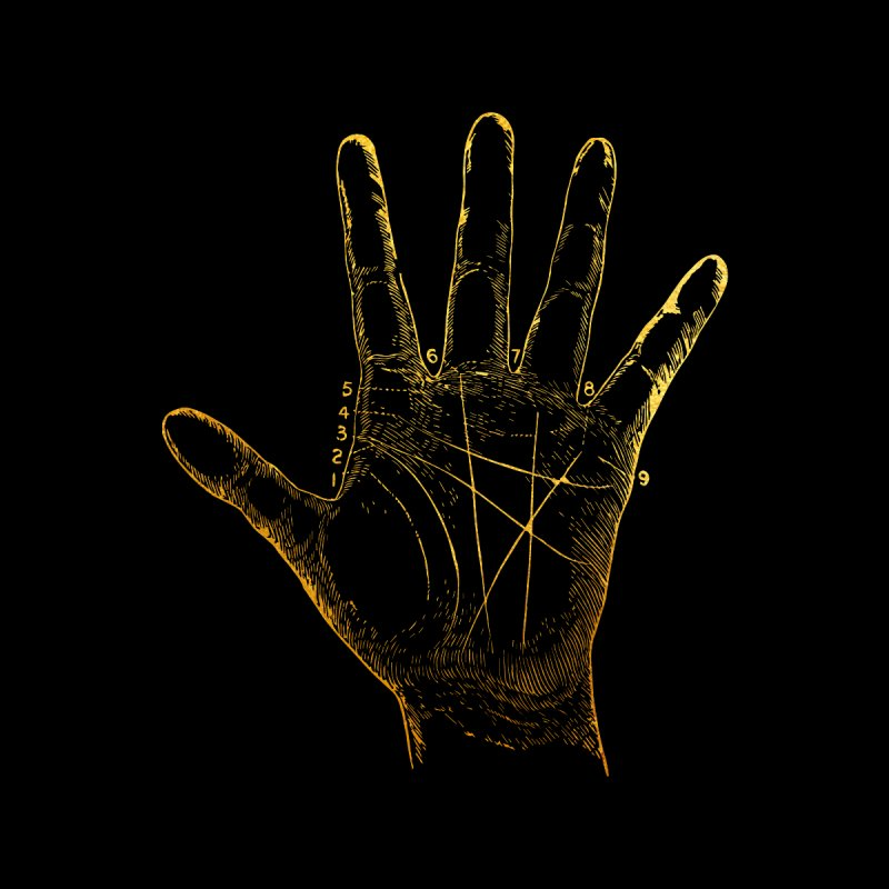 Palmistry by Paddy Ribeiro