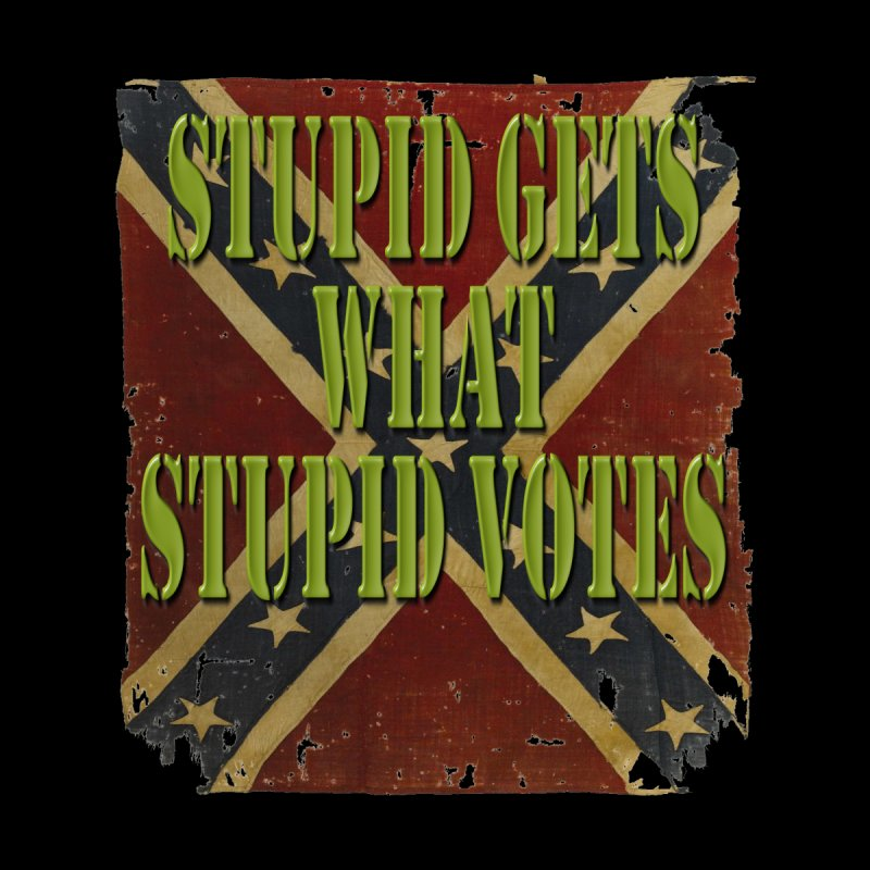 STUPID GETS..Confederate flag Kids T-Shirt by Paparaw's T-Shirt Design