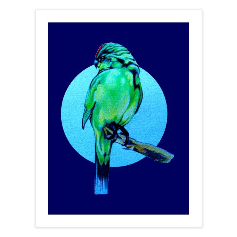 Parakeet - NZ Kakariki Home Fine Art Print by Patricia Howitt's Artist Shop