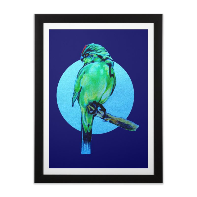 Parakeet - NZ Kakariki Home Framed Fine Art Print by Patricia Howitt's Artist Shop