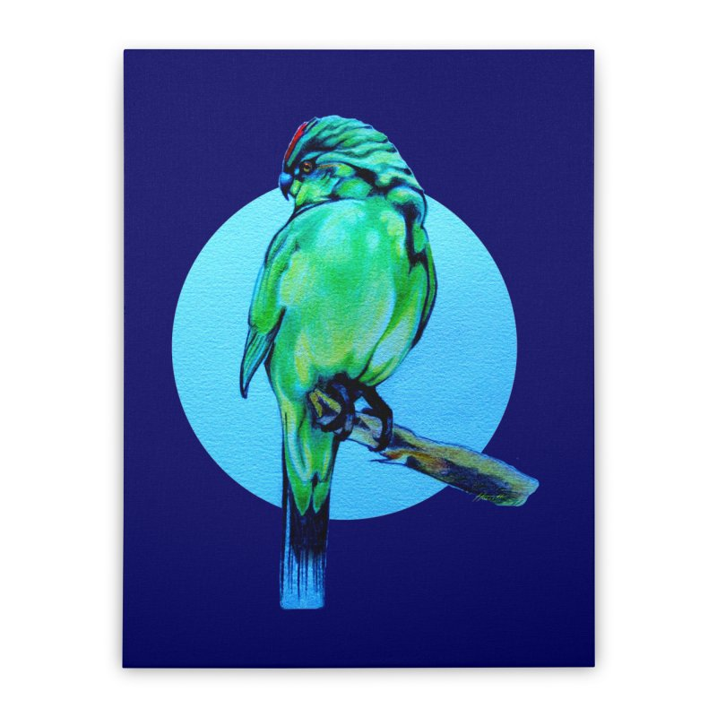 Parakeet - NZ Kakariki Home Stretched Canvas by Patricia Howitt's Artist Shop