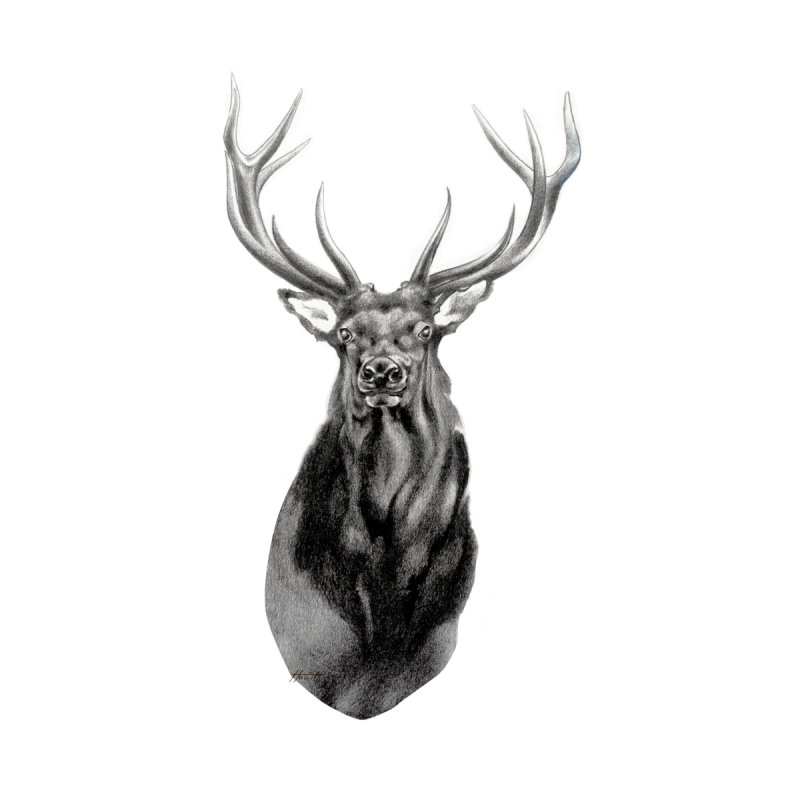 Elk 2 None  by Patricia Howitt's Artist Shop