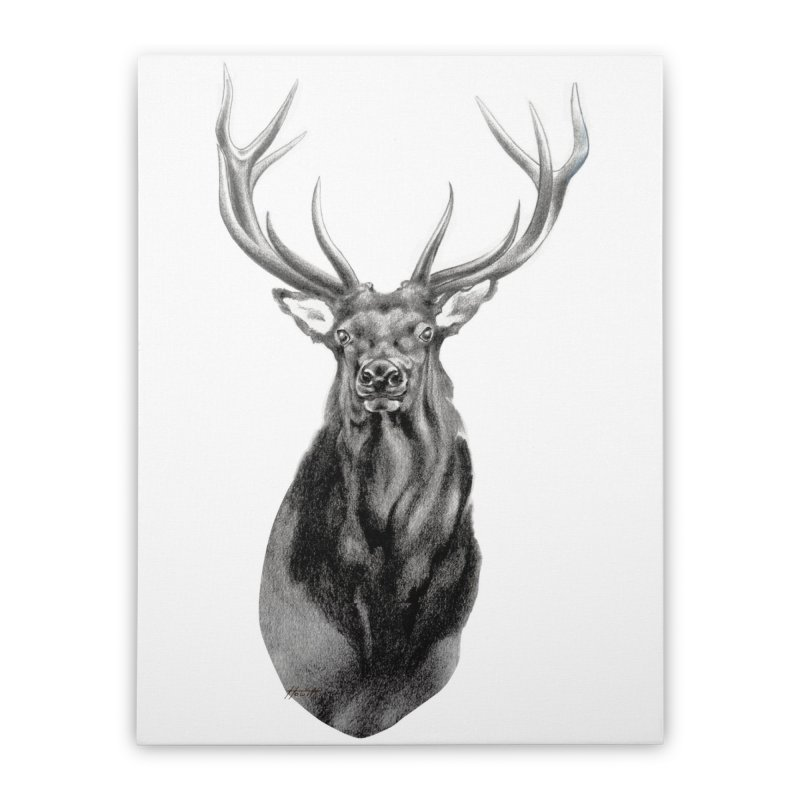 Elk 2 Home Stretched Canvas by Patricia Howitt's Artist Shop