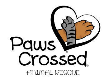 Paws Crossed Online Store Logo