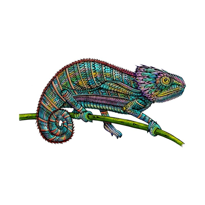 Chameleon None  by Pellvetica