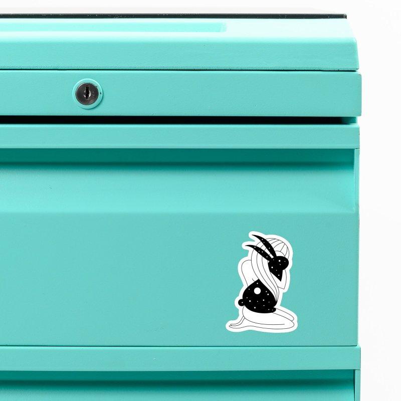 Follow The White Rabbit Accessories Magnet by Ekaterina Zimodro's Artist Shop