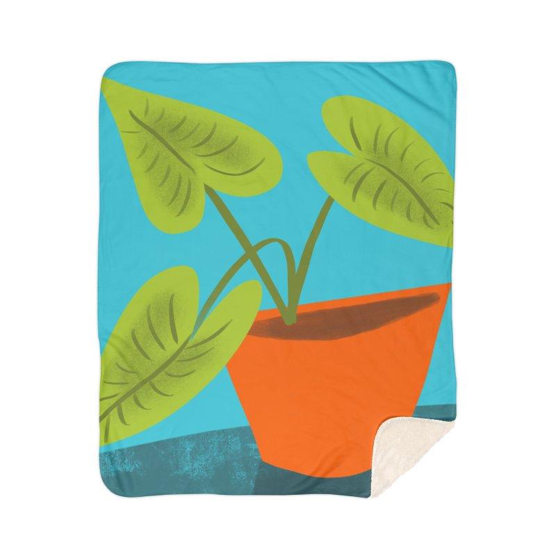 Seedlings on Aqua Home Sherpa Blanket Blanket by Michael Pfleghaar