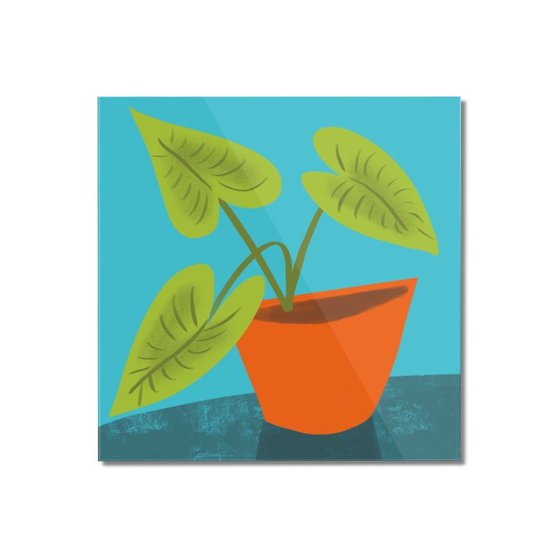 Seedlings on Aqua Home Mounted Acrylic Print by Michael Pfleghaar