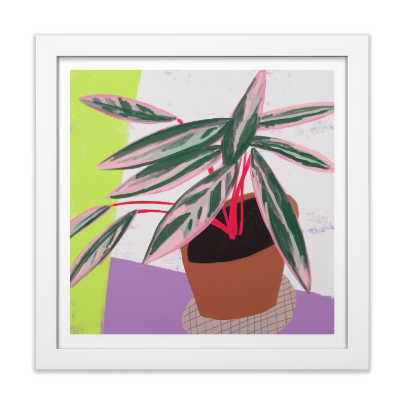 Stromanthe Plant in Framed Fine Art Print White by Michael Pfleghaar
