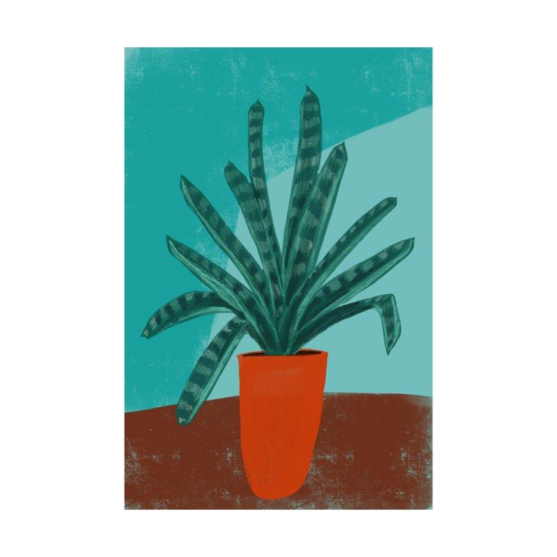 Bromeliad in Orange Pot   by Michael Pfleghaar Design
