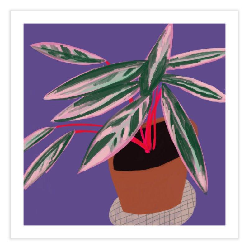 Ultra Violet Stromanthe Plant Home Fine Art Print by Michael Pfleghaar