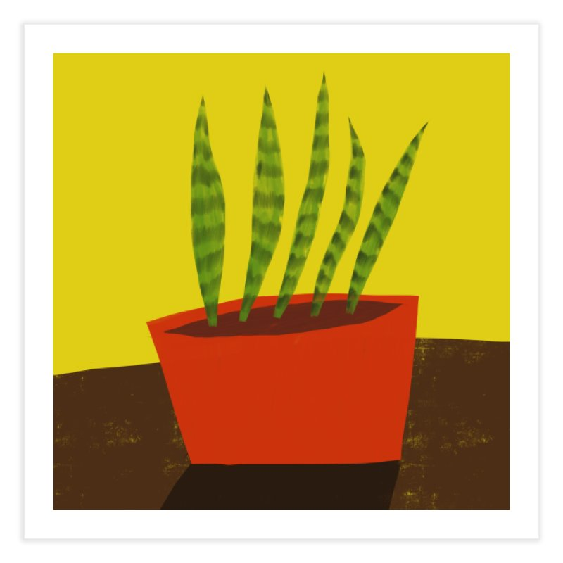 Snake Plant in Red Pot Home Fine Art Print by Michael Pfleghaar